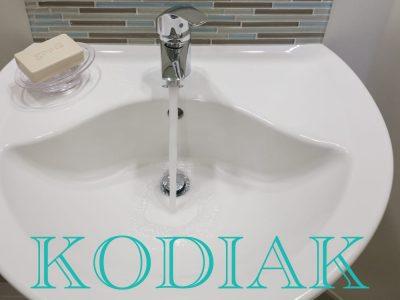 kodiak-plumbing